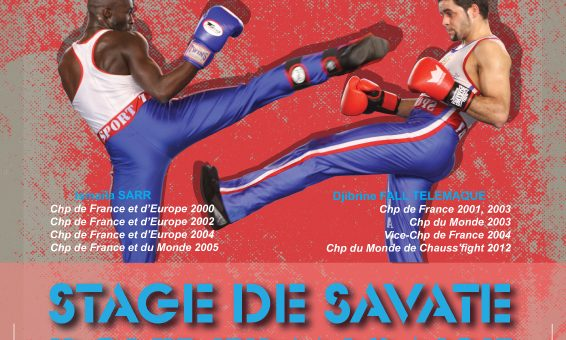 Stage Savate 29 mars 2020